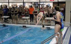 Ross Swimmer dives into pool during meet at the YMCA
