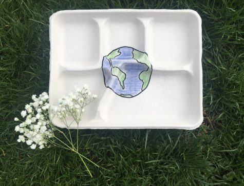 Earth-friendly changes, such as switching to biodegradable trays like the one pictured, will help make a positive impact on the environment.