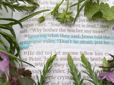 Applying the truth of God