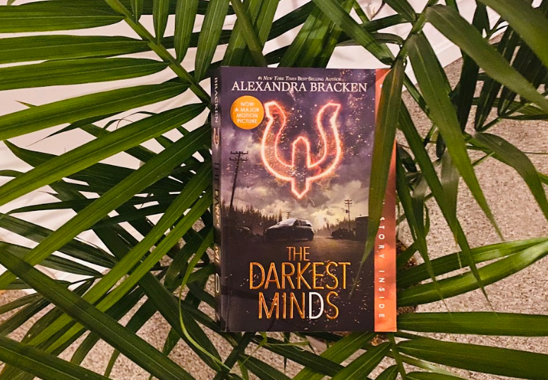 The+first+book+of+the+Darkest+Minds+series+by+Alexandra+Bracken.