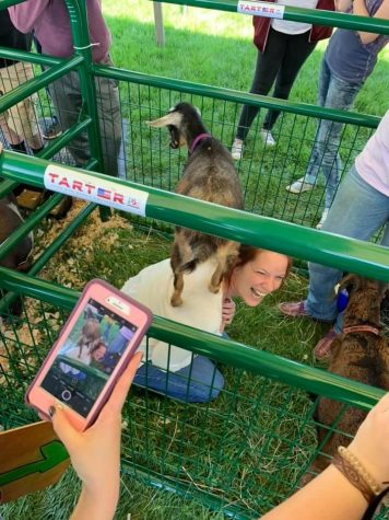 Ms. Mitchell interacting with some goats at Ross FFA Food for America day in May of 2019.